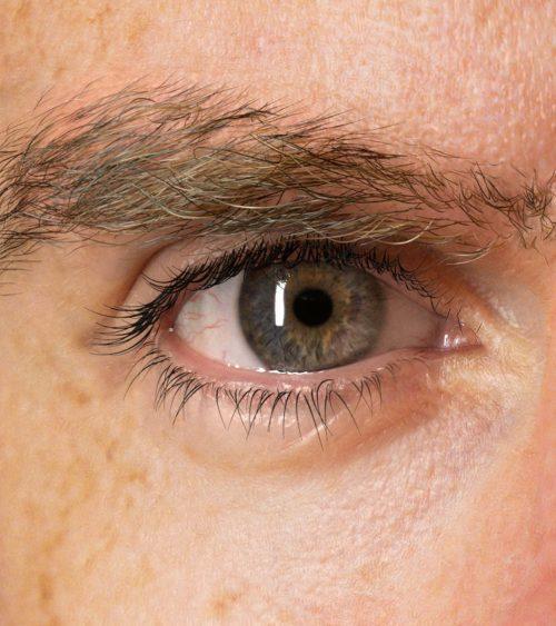 3D digital portrait of Richard